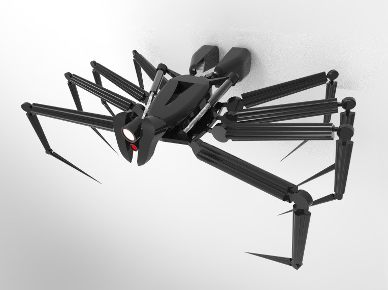 Some Problems That Scientists Have to Deal with the Spider Robot