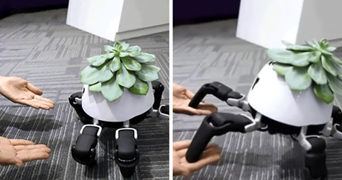 Never Let Your Plant Lose Sunlight With This Modified HEXA Robot